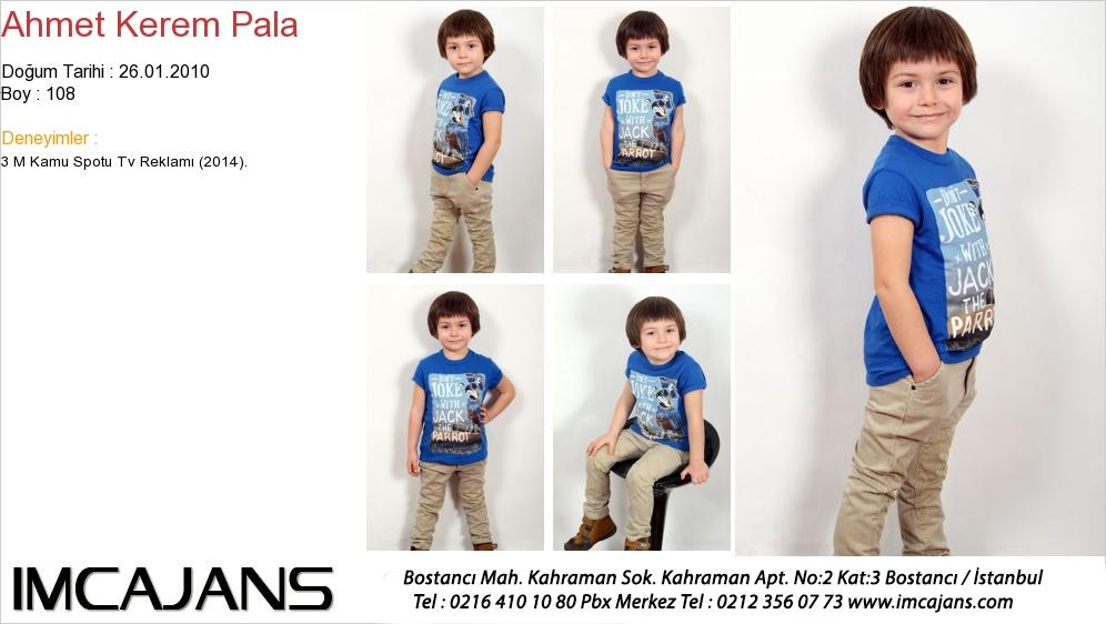Ahmet Kerem Pala - IMC AJANS