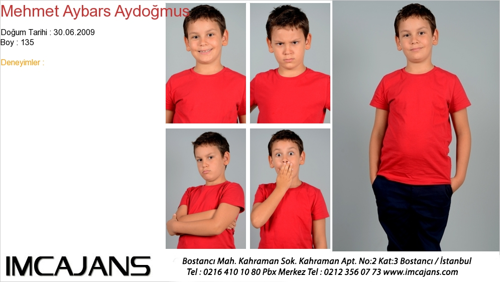 Mehmet Aybars Aydoðmus - IMC AJANS
