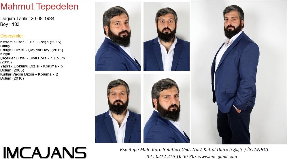 Mahmut Tepedelen - IMC AJANS