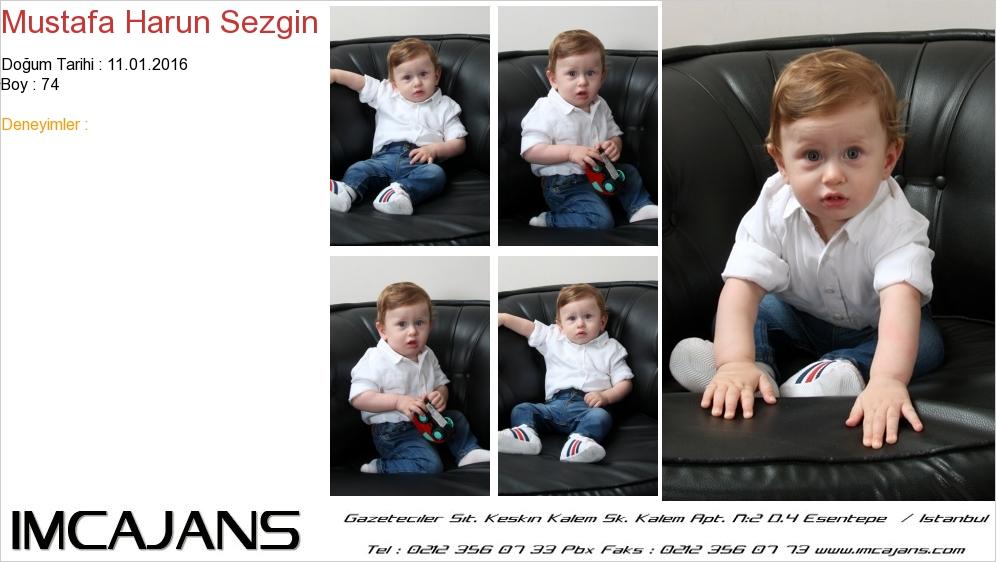 Mustafa Harun Sezgin - IMC AJANS