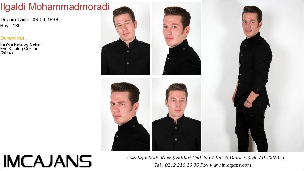 Ilgaldi Mohammadmoradi - IMC AJANS