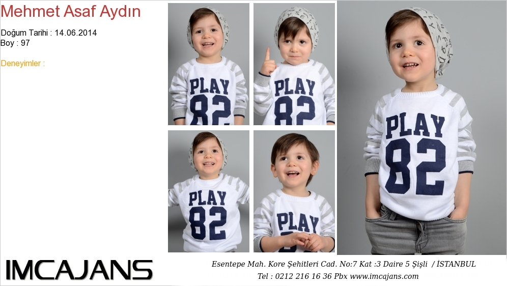 Mehmet Asaf Aydýn - IMC AJANS