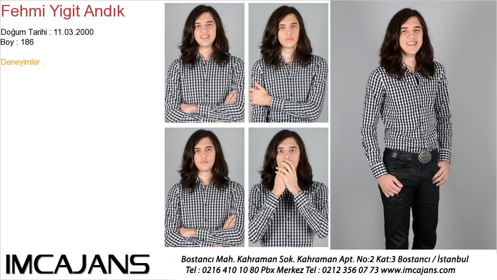 Fehmi Yigit Andýk - IMC AJANS