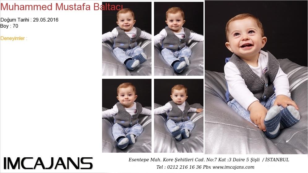 Muhammed Mustafa Baltacý - IMC AJANS