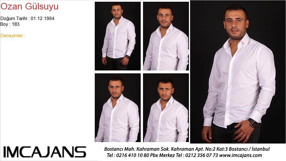Ozan Gülsuyu - IMC AJANS