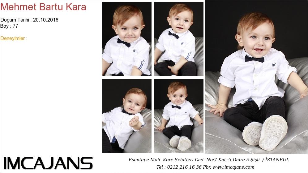 Mehmet Bartu Kara - IMC AJANS